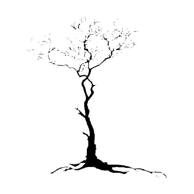 Arbre Hivernal