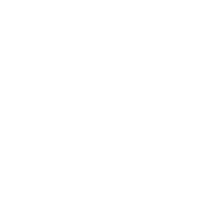 Rider Véliplanchiste