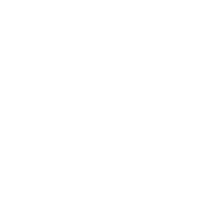 Skateur Ride Skate