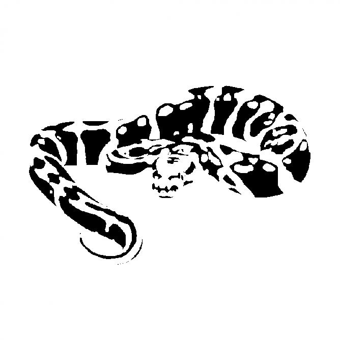 Serpent Vipère