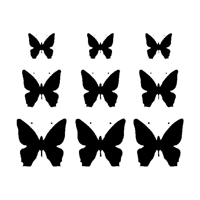 Kit Nature Papillons