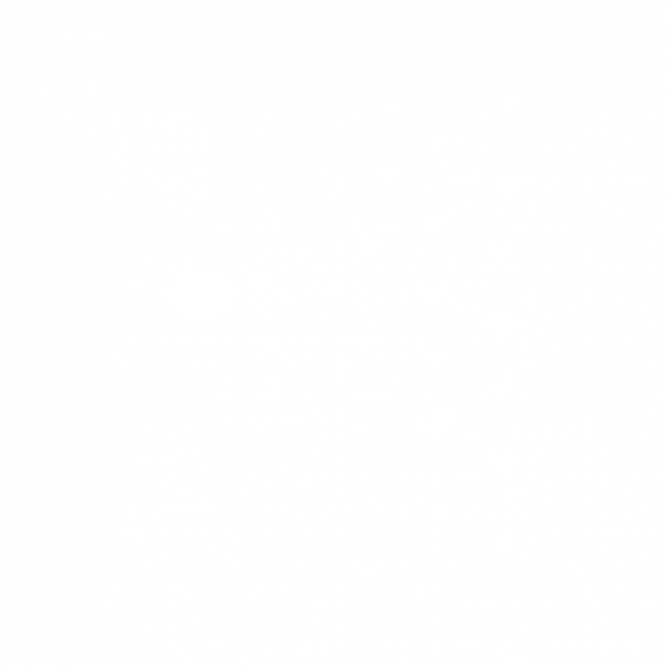 Coeur et Oiseau