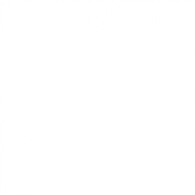 Avion Furtif